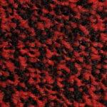 Black Scarlet